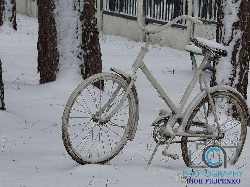 Зима Кропивницький